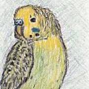 Perry Art Print