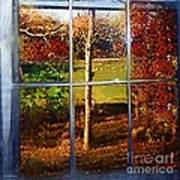 Perspective On Fall  Art Print