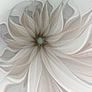 Petal Soft White Art Print