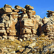Petrified Forest Rock Formations Art Print
