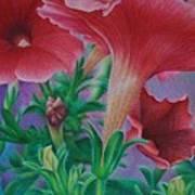 Petunia Skies Art Print