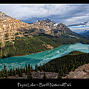 Peyto Lake Poster Art Print