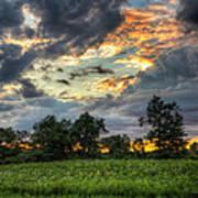 Phantom Sunset Over Sunflower Fields  Art Print