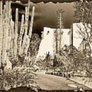 Phoenix Botanical Garden Path Art Print