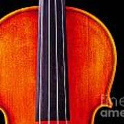 Photograph Or Picture Violin Viola Body In Color 3367.02 Art Print