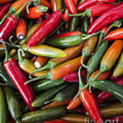 Pick A Peck Of Peppers Art Print