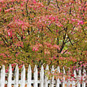 Picket Fence Fall Art Print