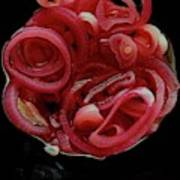 Pickled Red Onions Art Print