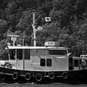 Picton Boating Art Print