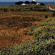 Piedras Blancas Lighthouse Art Print