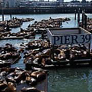 Pier 39 San Francisco Bay Art Print