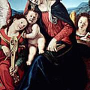 Piero Di Cosimo Art Print