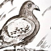 Pigeon II Sumi-e Style Art Print