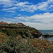 Pigeon Point Lighthouse Painted Art Print