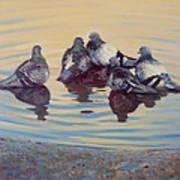 Pigeon Talk Art Print