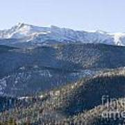 Pike National Forest In Snow Art Print