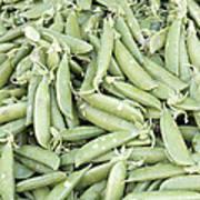 Pile Of Sugar Peas Background Art Print