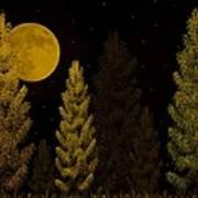 Pine Forest Moon Art Print