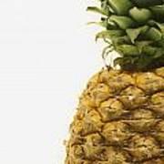 Pineapple Art Print by Darren Greenwood