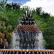 Pineapple Fountain Print by Skip Willits