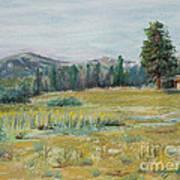 Pingree Park Art Print