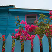 Pink And Blue House Art Print