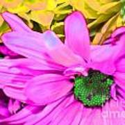 Pink And Green Flowers Art Print