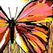 Pink Butterfly Art Print