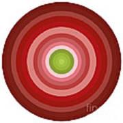 Pink Circles Print by Frank Tschakert