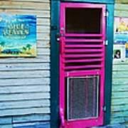 Pink Door Art Print