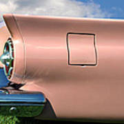 Pink Fins Art Print by Bill Cannon