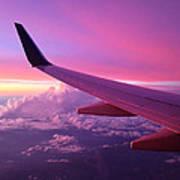 Pink Flight Art Print