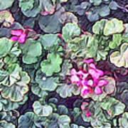 Pink Flowers Painting Art Print