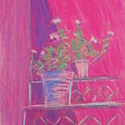 Pink Geraniums Art Print by Marcia Meade