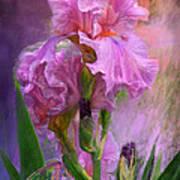 Pink Goddess Art Print