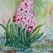 Pink Hyacint Art Print