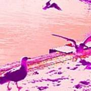 When Seagulls Are Living The Pink Life  Art Print