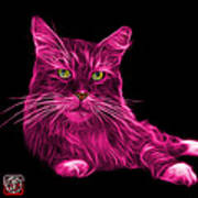 Pink Maine Coon Cat - 3926 - Bb Art Print