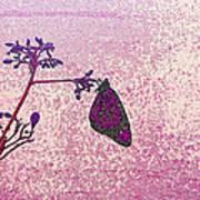 Pink Monarch Art Print