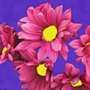 Pink On Purple Art Print