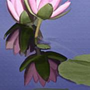 Pink Reflection Art Print