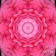Pink Rose Bouquet Kaleidoscope Art Print