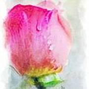 Pink Rose Bud - Digital Paint II Art Print