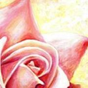 Pink Rose Panel Two Of Four Art Print