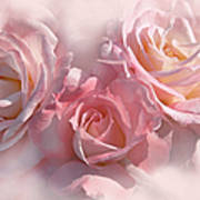 Pink Roses In The Mist Art Print