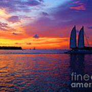 Pink Sunset In Key West Florida Art Print by Susanne Van Hulst