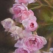 Pink Winter Roses One Art Print