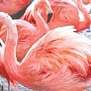 Pinked Flamingos Art Print