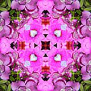 Pinks- Oh My Art Print
