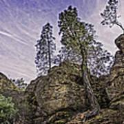Pinnacles And Trees Art Print